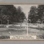 Центральная аллея в парке